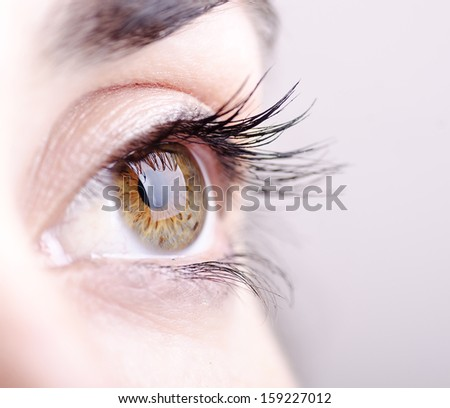 Closeup image of green and brown eye - stock photo