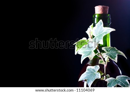 closeup neck of the green glass wine bottle with ivy