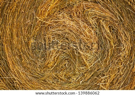 Closeup of a bale of hay in the field - stock photo