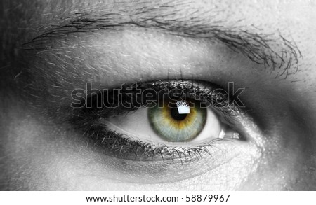 Closeup of a beautiful eye - stock photo