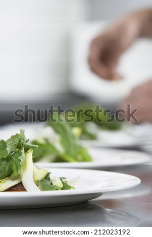 Closeup of a blurred chef preparing meal with focus on salad in foreground - stock photo
