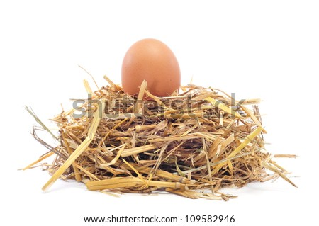closeup of a brown egg in a nest on a white background