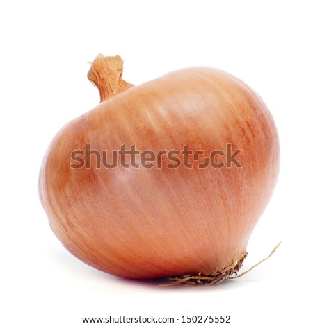 closeup of a brown onion on a white background