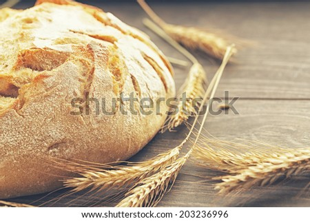 Closeup of a crusty bread and ears - stock photo