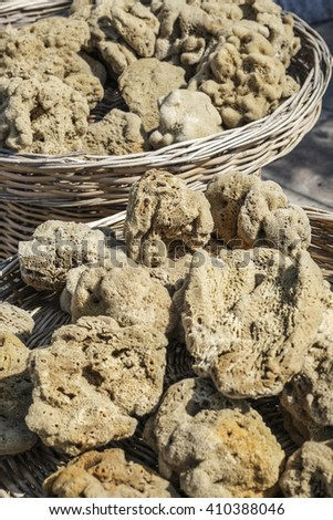 closeup of a natural sponges - stock photo