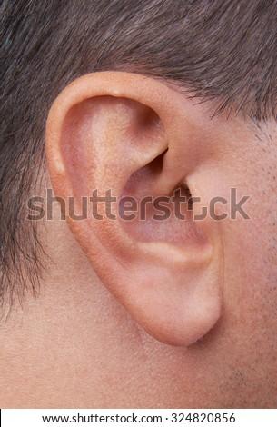 Closeup of a perfect human ear - stock photo