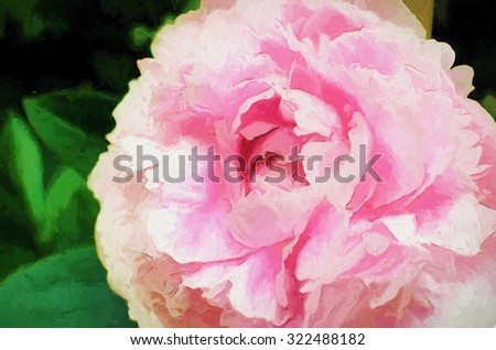 Closeup of a pink peony in bloom transformed into a colorful digital painting - stock photo
