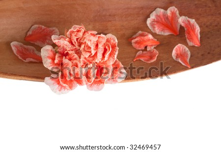 Closeup of a pomegranate flower set in a dried coco leaf - stock photo