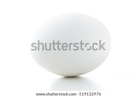 Closeup of a single oval isolated white egg horizontal on a white background