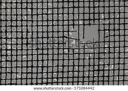 Closeup of a tear in a mosquito mesh. In focus at the mesh around it and leave the rest out-of-focus. - stock photo