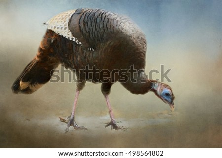 Closeup of a wild turkey transformed into a colorful painting on a textured background