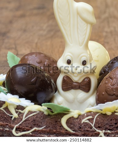 Closeup of an easter cake with chocolate eggs and bunny - stock photo