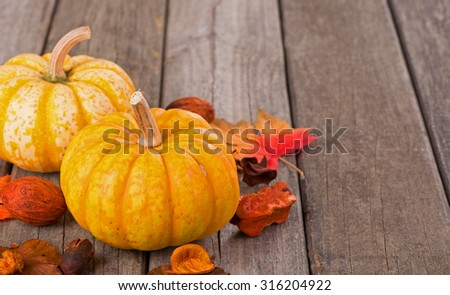 Closeup of autumn gourds on a old wood surface - stock photo