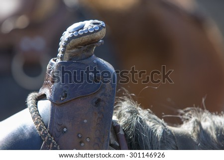 Closeup of brown rustic saddle on chestnut horse at the Laguna Mucubaji waiting for a tourist ride near Apartaderos in Merida State. Venzuela - stock photo