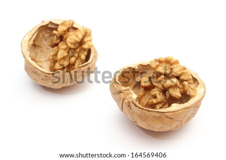 Closeup of brown walnut in nutshells. Isolated on white background - stock photo