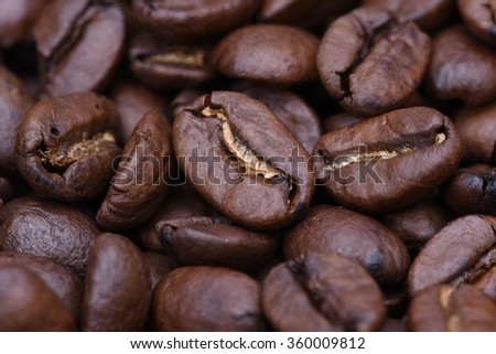 Closeup of coffee beans selective focus - stock photo