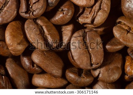 Closeup of coffee beans with focus on one. Macro