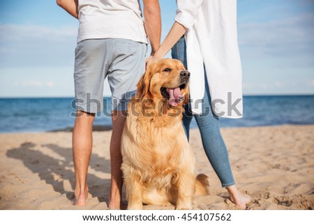 Closeup of cute dog walking with young couple on the beach - stock photo