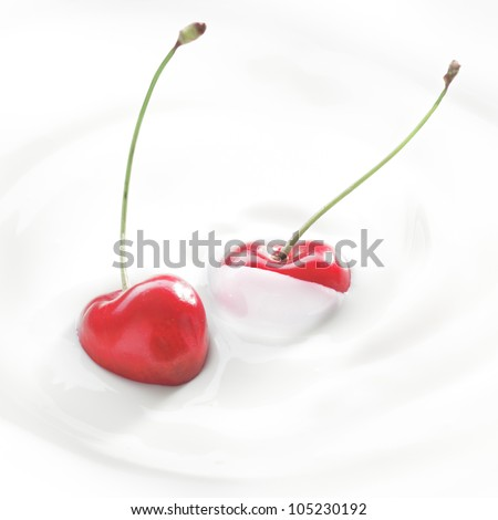 Closeup of delicious healthy fresh ripe red cherries dipped in whipped cream or yoghurt - stock photo