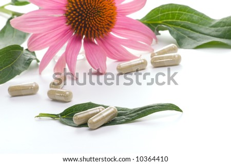 Closeup of Echinacea extract pills and fresh Echinacea flower leaves best suited for alternative medicine ads. Shallow DOF. - stock photo