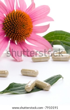 Closeup of Echinacea extract pills and fresh Echinacea flowers best suited for alternative medicine ads. Shalow DOF. - stock photo