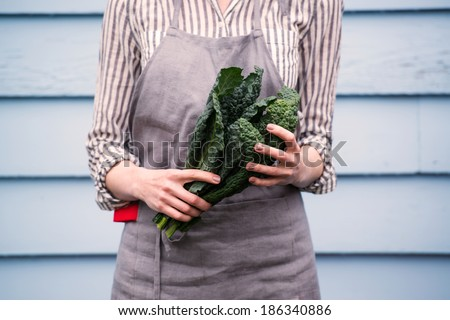 Closeup of Female Hands Holding Bunch of Green Italian Kale  - stock photo