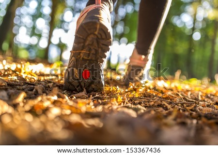 Closeup of female legs hiking on a beautiful summer day. - stock photo