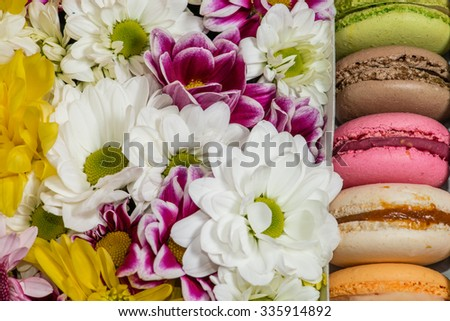 Closeup of  Flowers and macaroon