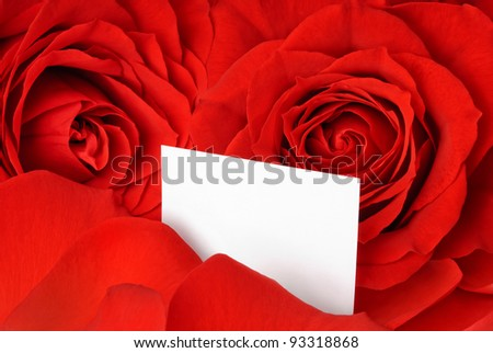 Closeup of gorgeous red roses and petals and an empty white card for a loving message