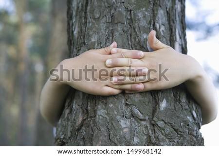 Closeup of hands embracing tree trunk - stock photo