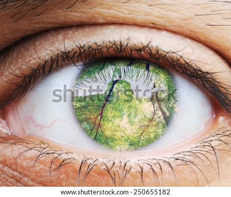 Closeup of human eye, macro mode with double exposure - stock photo