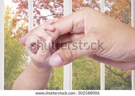 Closeup of little baby hand gripping the father finger at home, shot with autumn background on the window - stock photo