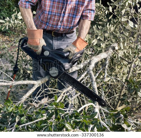 Closeup of Man in gloves and cutting fallen branches and foliage debris with electric chainsaw after a storm - stock photo