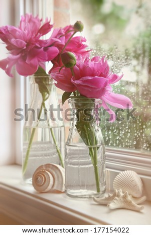 Closeup of peony flowers in milk bottles in the window - stock photo