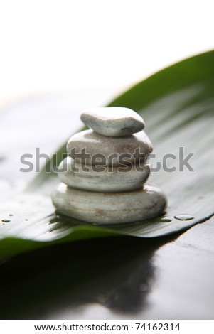 Closeup of pile of pebbles on natural green leaf - stock photo