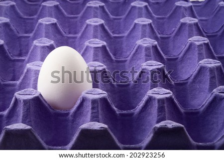 Closeup of purple egg tray fragment with one egg. - stock photo