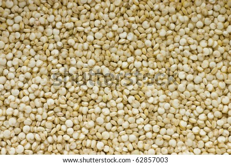 Closeup of Quinoa grains