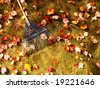 closeup of rake on lawn filled with colorful leaves - stock photo
