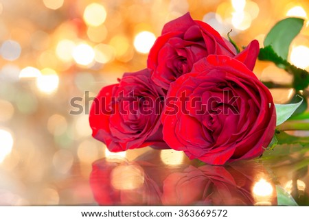 Closeup of red roses against a beautiful background.  - stock photo