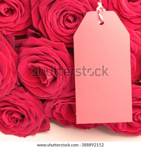 Closeup of red roses with blank tag  - stock photo