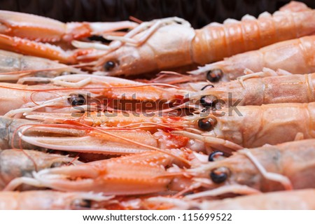 Closeup of scampi