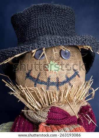 Closeup of scarecrow head on dark blue background - stock photo