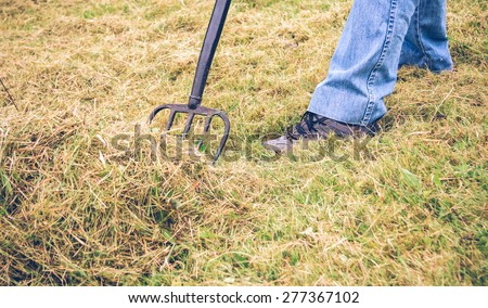 Closeup of senior man feet raking hay with pitchfork on a field - stock photo