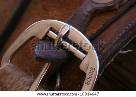 closeup of silver buckle on saddle - stock photo