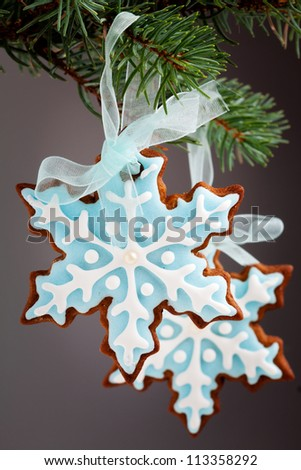 Closeup of snowflake gingerbread cookies hanging from tree - stock photo