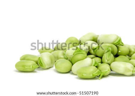 closeup of some broad beans isolated on a white background - stock photo