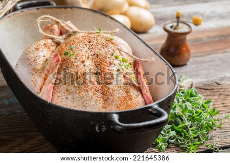 Closeup of spiced raw chicken wirh hebrs - stock photo