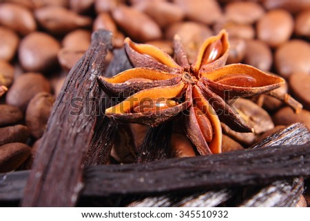 Closeup of star anise, fresh fragrant vanilla pods and coffee grains, seasoning ingredients for cooking or baking - stock photo