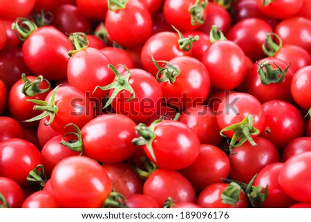 closeup of the fresh cherry tomatoes ,delicious fruit background