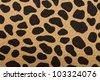 closeup of tiger texture - stock photo